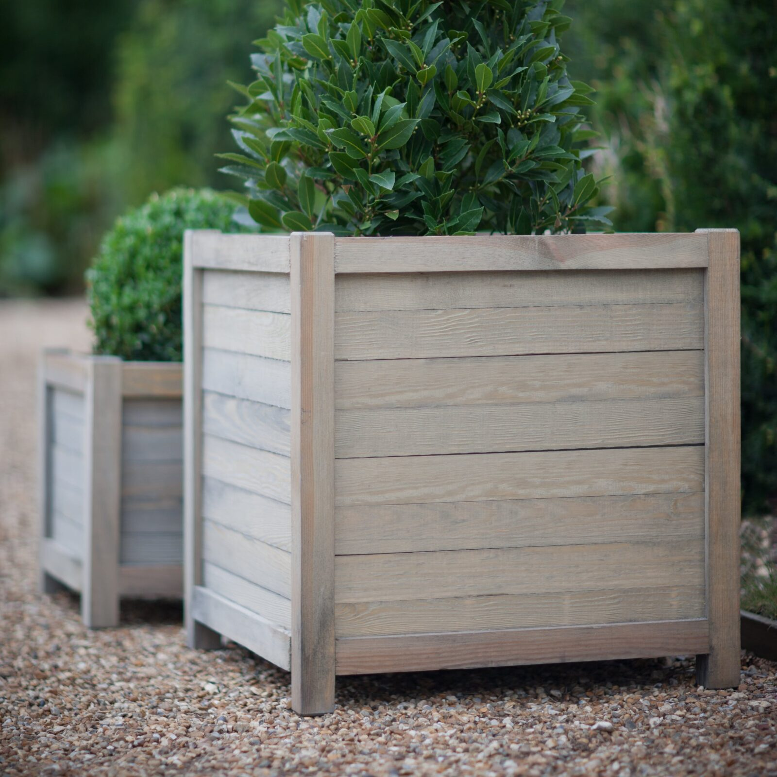 60cm Planter - Spruce