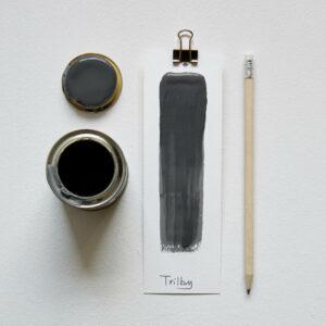 Earthborn Trilby Paint