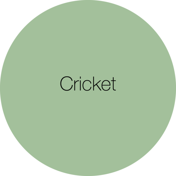 Earthborn Cricket