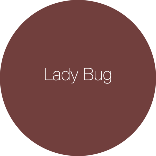 Earthborn Lady Bug