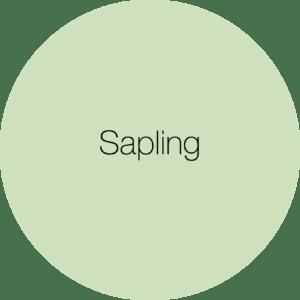 Earthborn Sapling