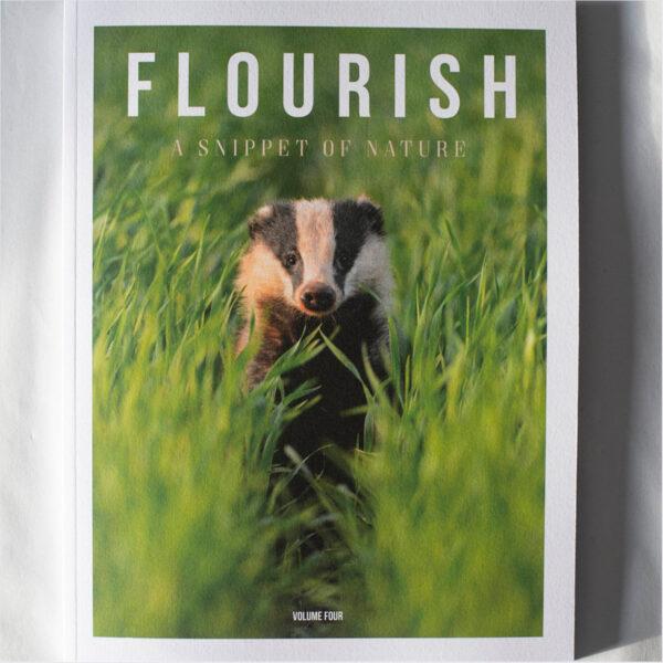 Flourish magazine volume 4